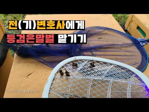 SONY_16296126105sk.jpg